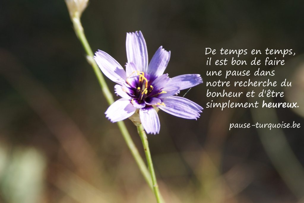 carte-pause-bonheur-bis